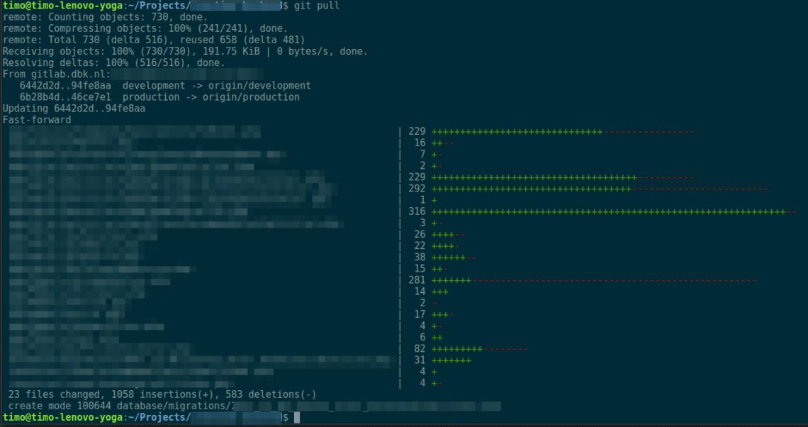 Een typische pull in de projectmap